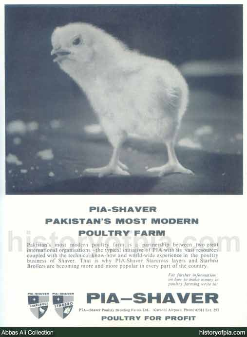 PIA-Shaver Poultry Breeding Farms